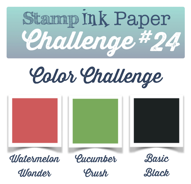 SIP Color Challenge 24 800