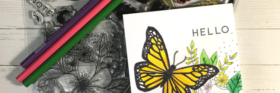 Hello Lovely Butterfly – Where Creativity Meets Concord & 9th